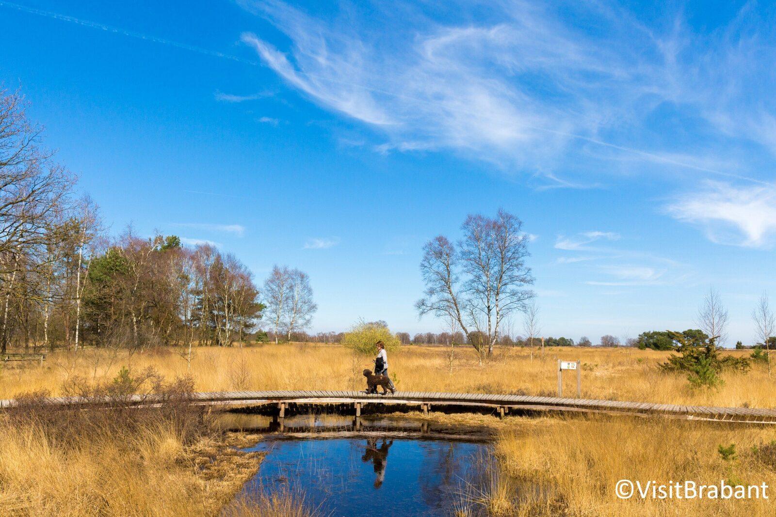Vakantie vieren op de Strabrechtse Heide in Brabant
