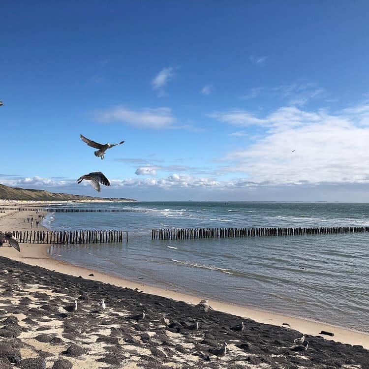 Urlaub Zeeland ans Meer