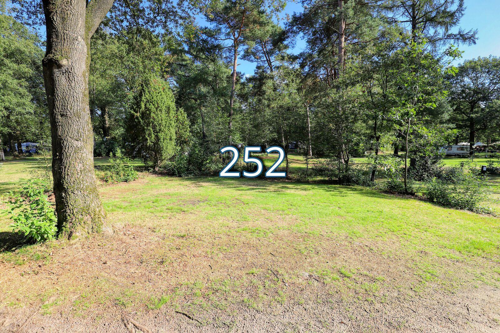 bosrand 252