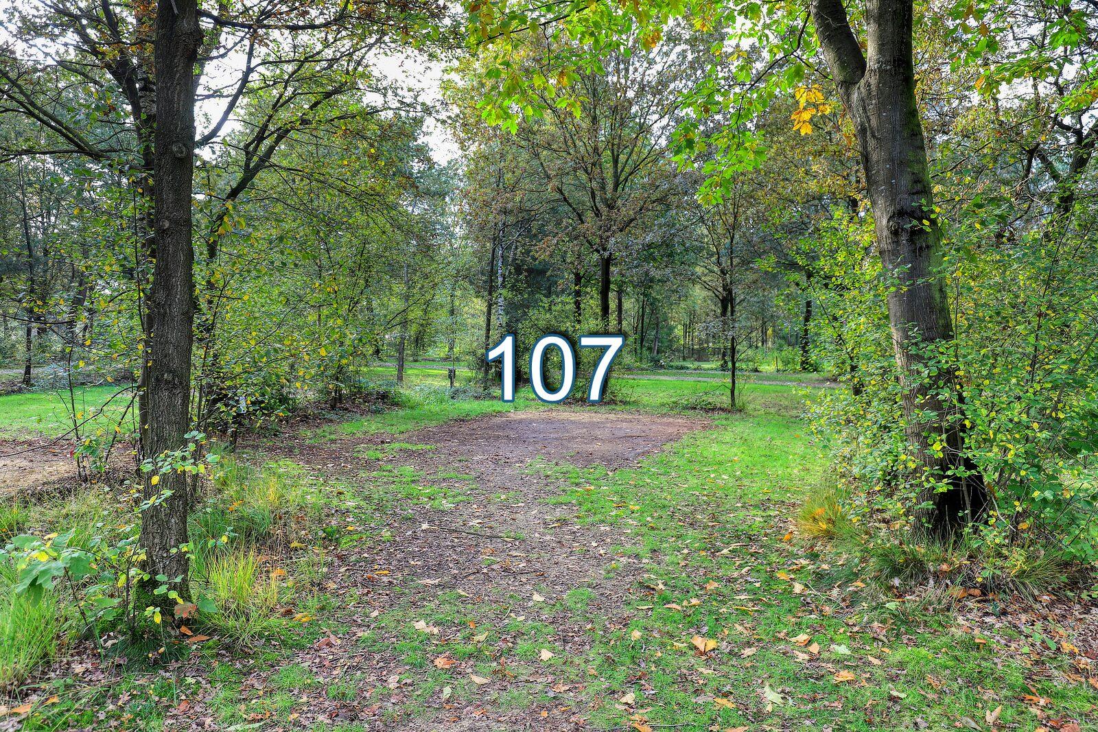 boshoek 107
