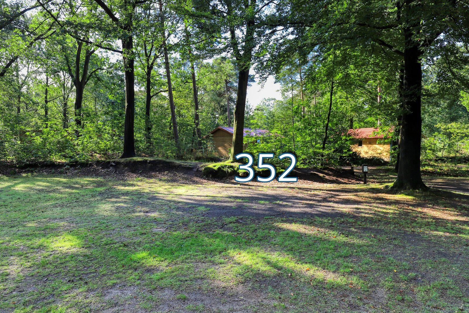 houtduif 352