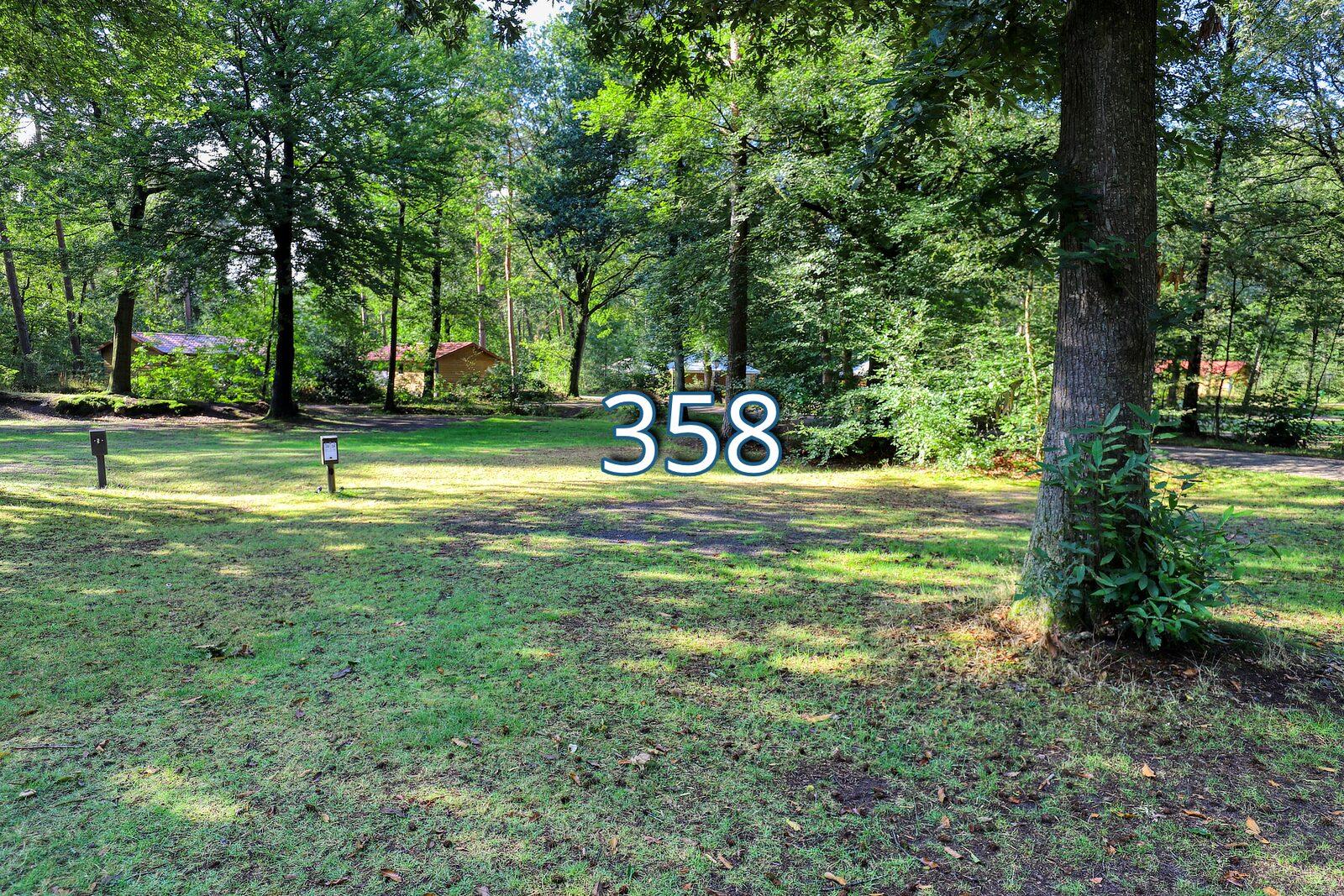 houtduif 358