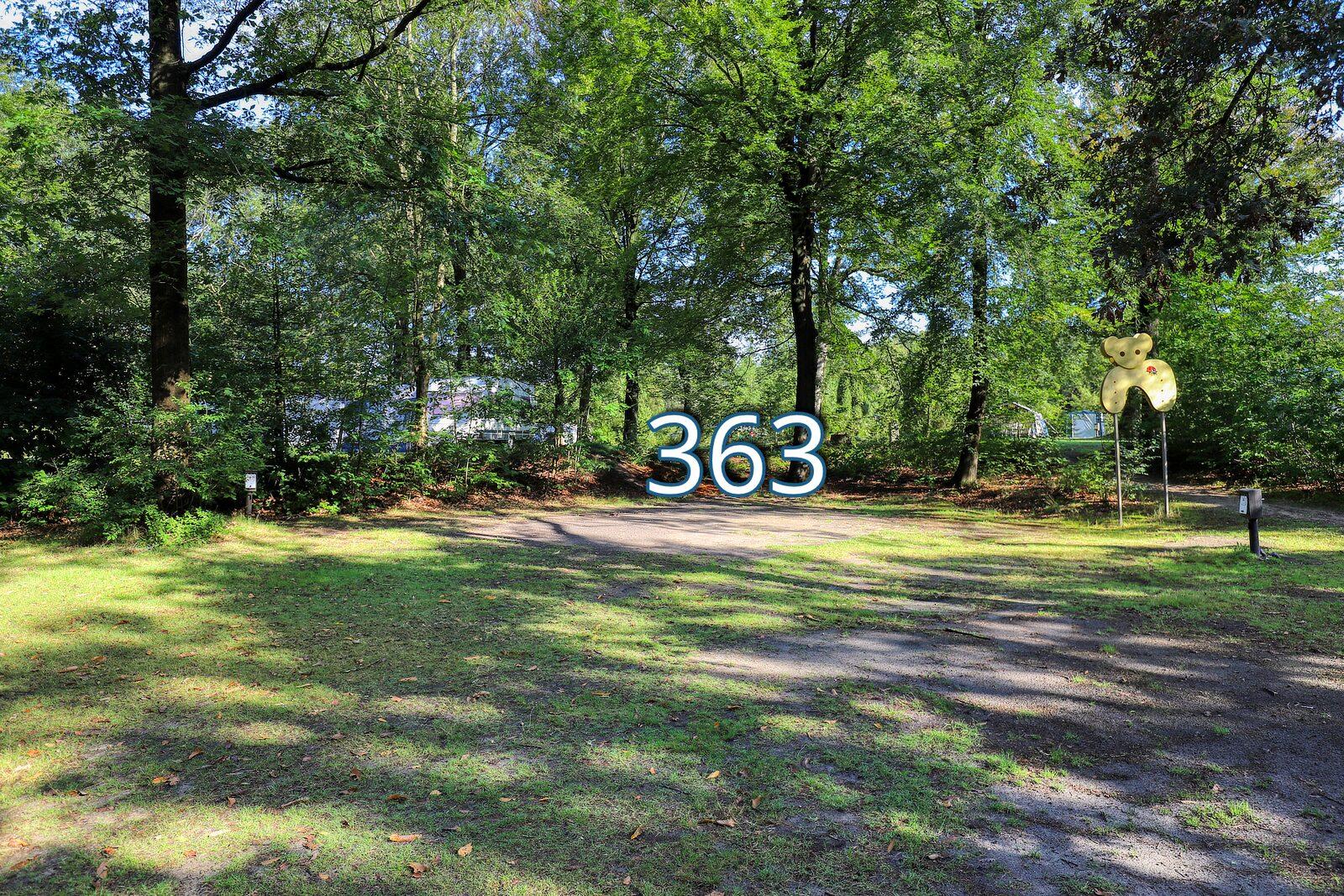 houtduif 363