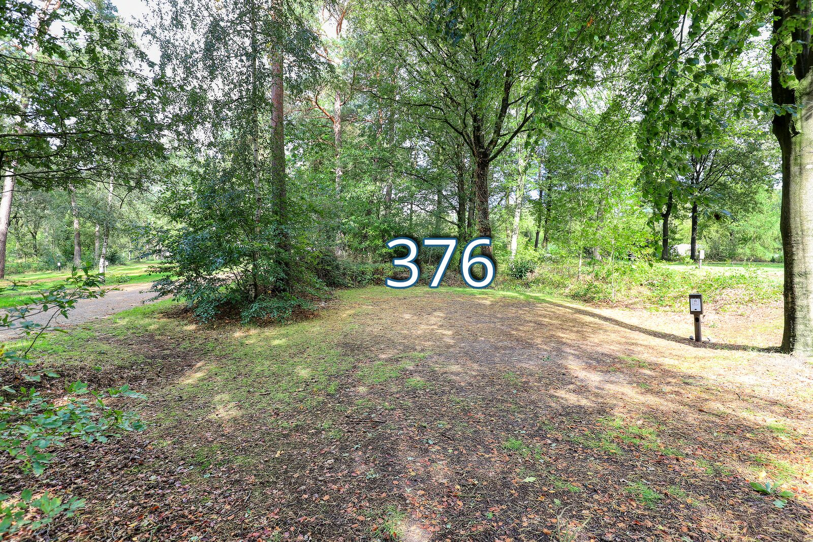 houtduif 376
