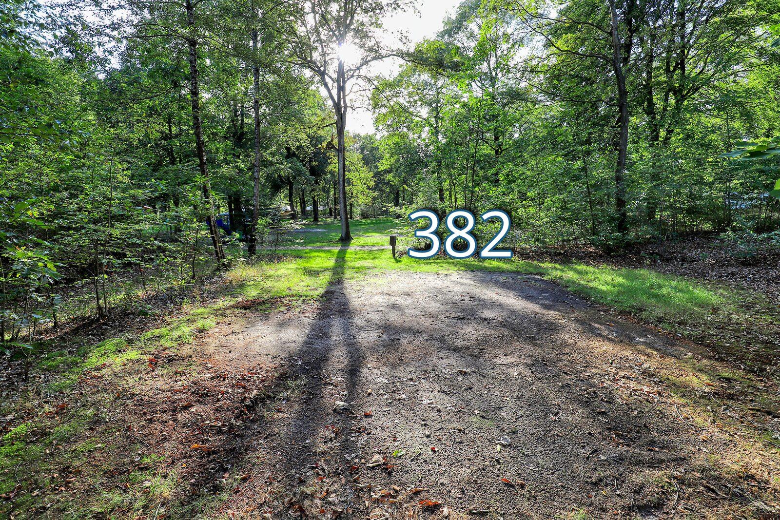 top 20 houtduif 382
