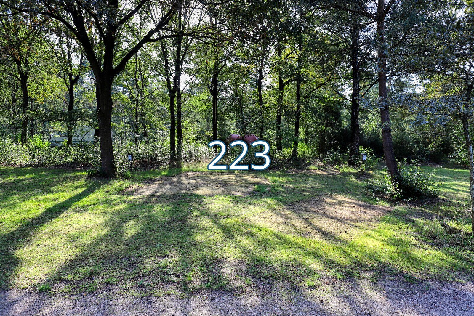 iberen 223