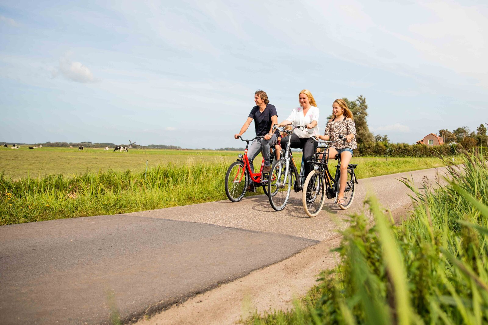 Cycling holiday Netherlands