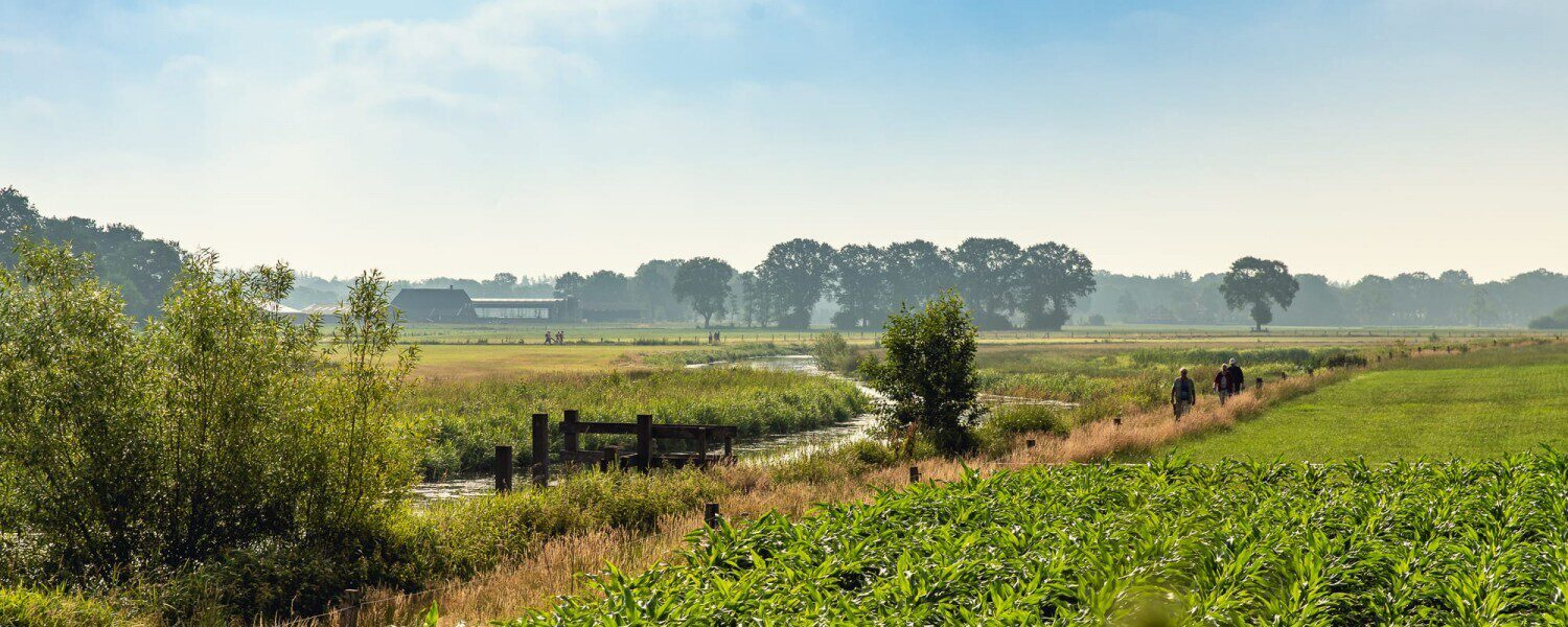Hiking holiday in The Netherlands