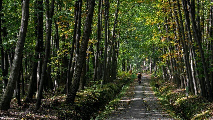 Blaue Route Holten (25 Kilometer)
