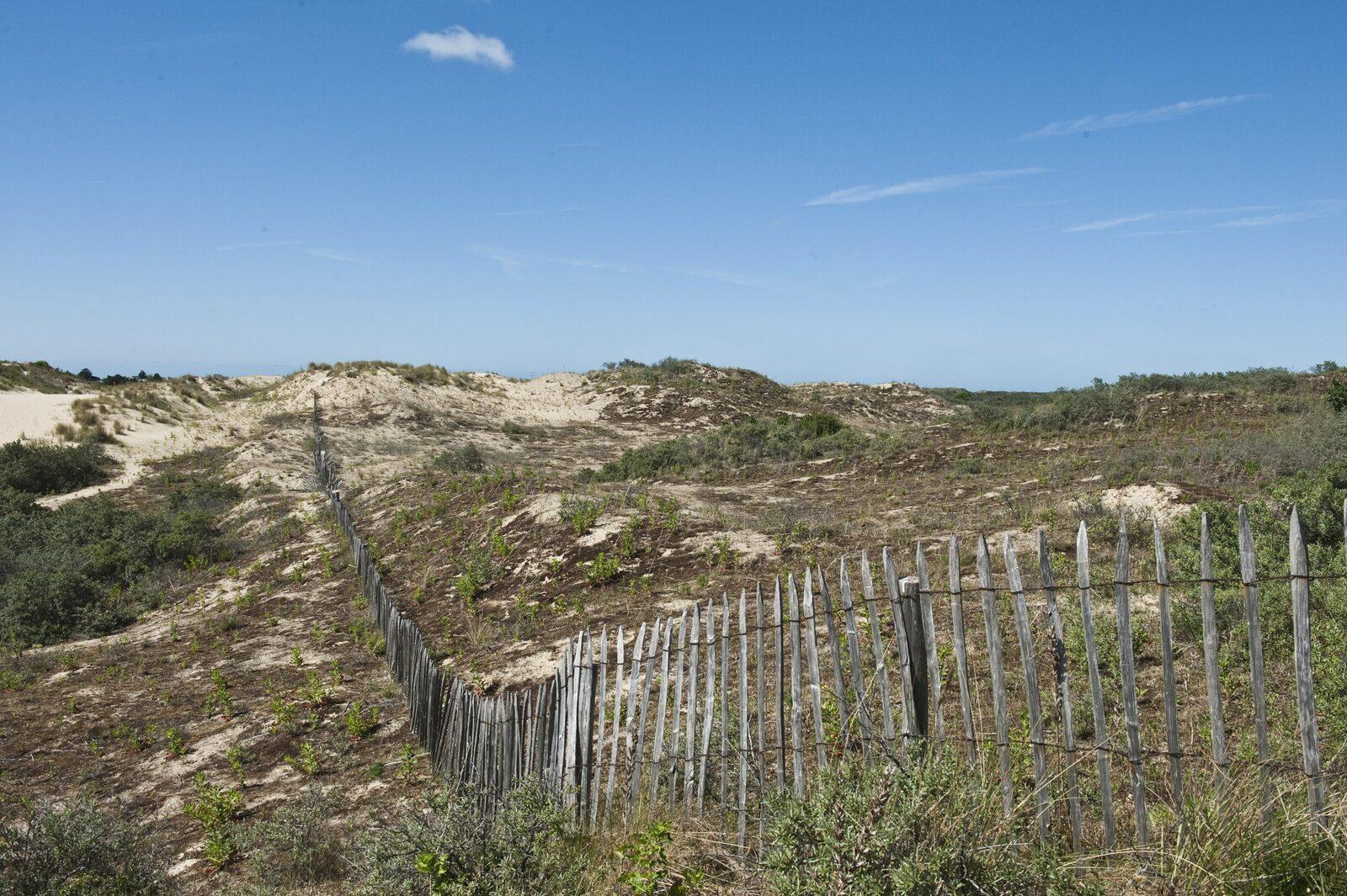 Dunes de Bray Dunes Côte d'Opale