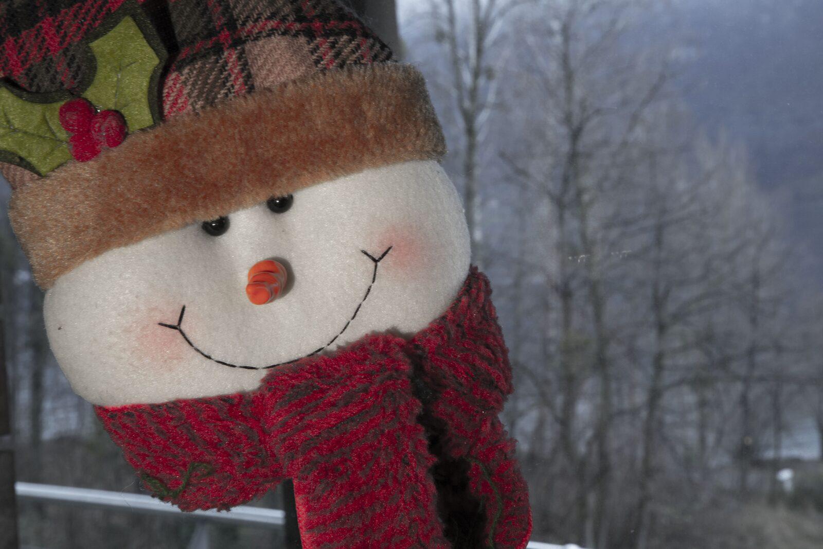 Kerstmis in Heidiland Zwitserland