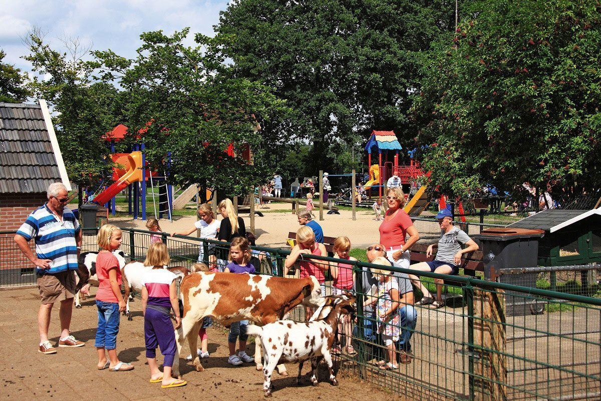Children's farm Dondertman