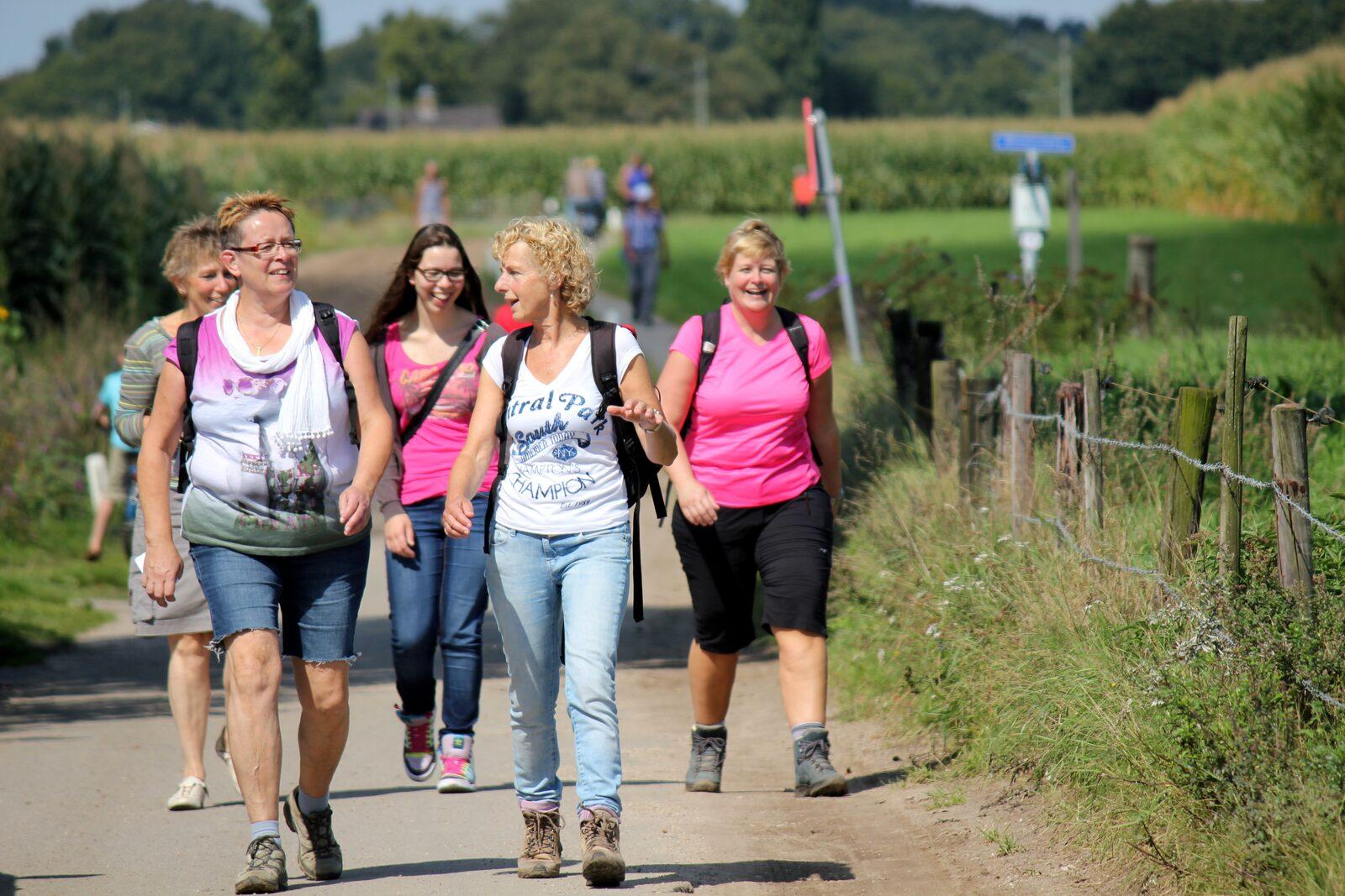 Plus vier Tage Wandern in Alkmaar
