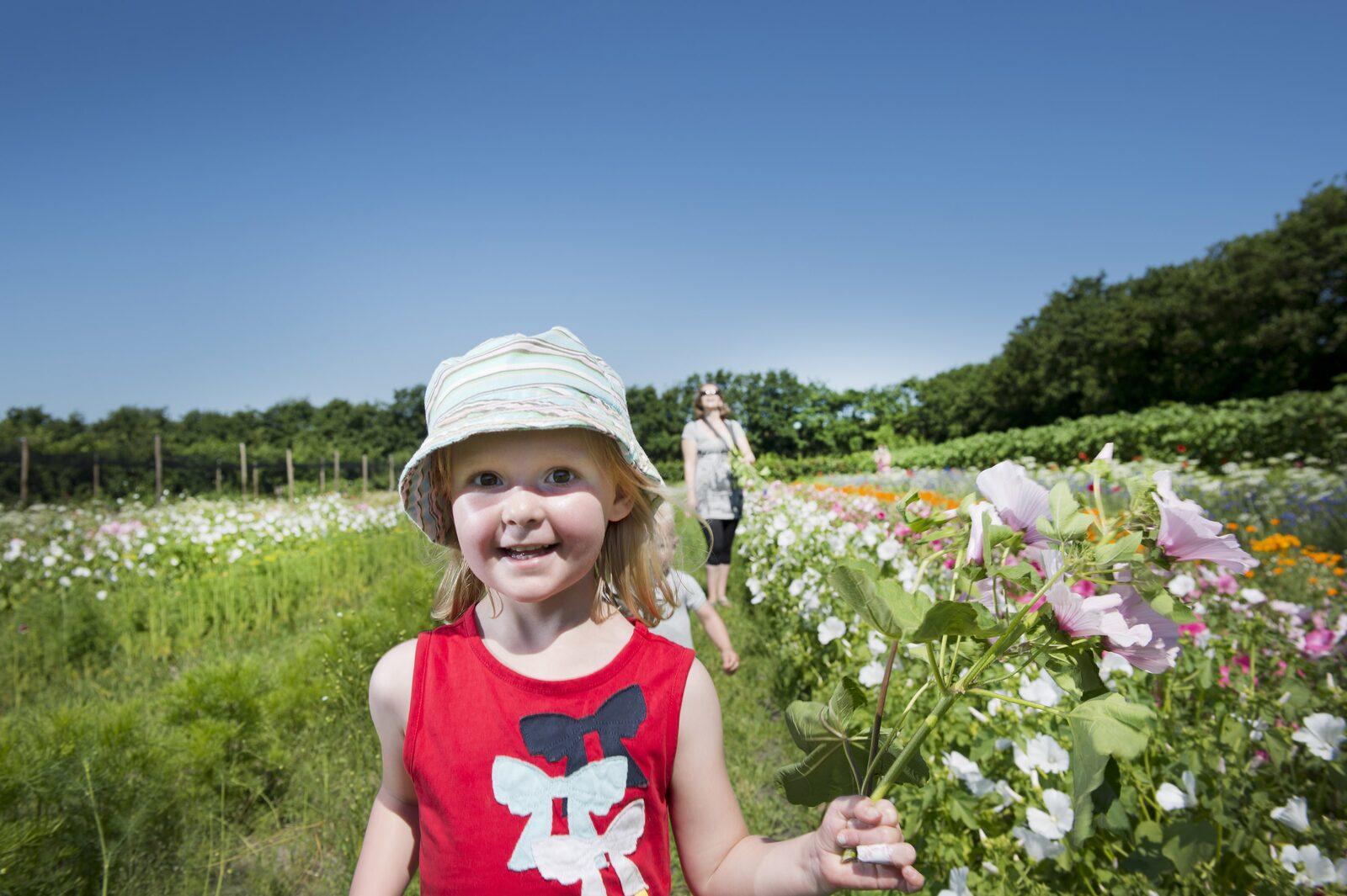 5x de leukste activiteiten met kinderen op Terschelling
