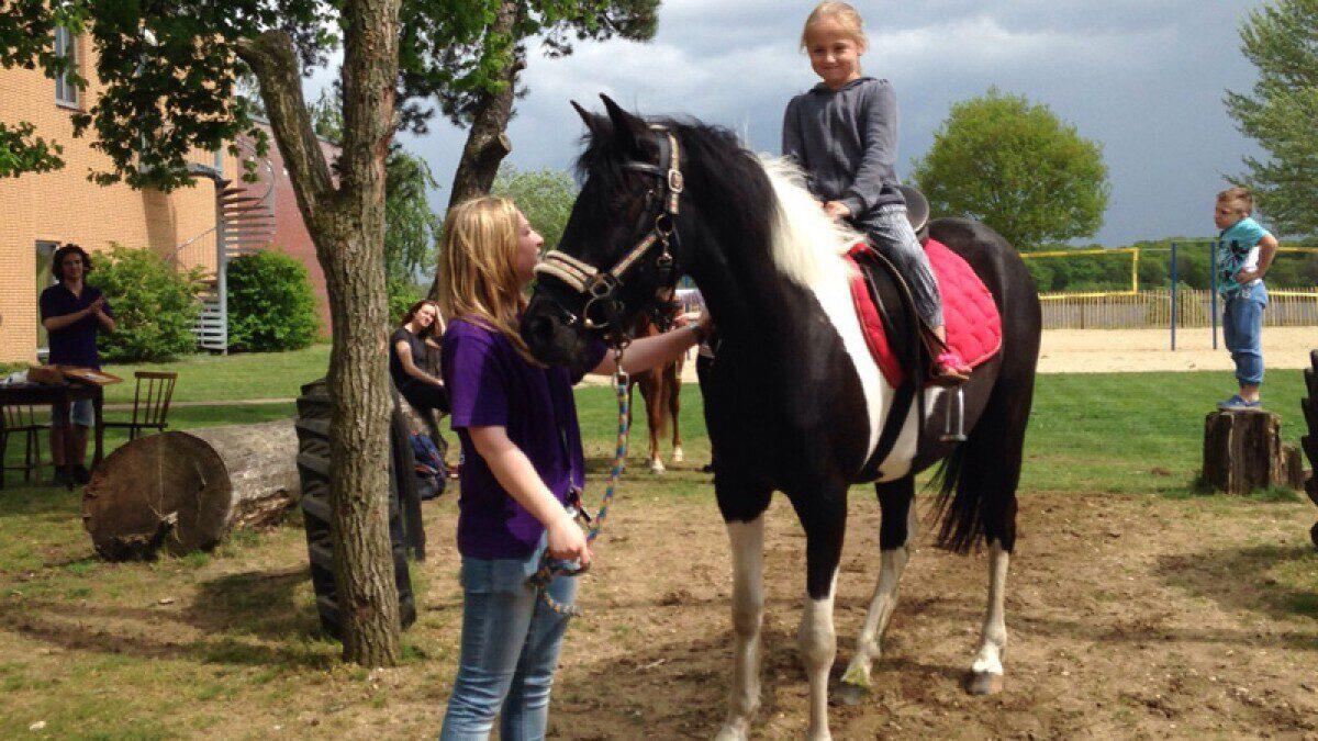 Pony reiten und Wald spiele