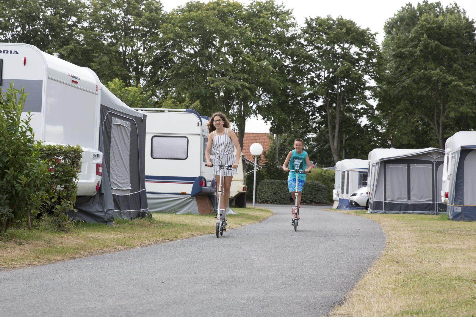 Information camping