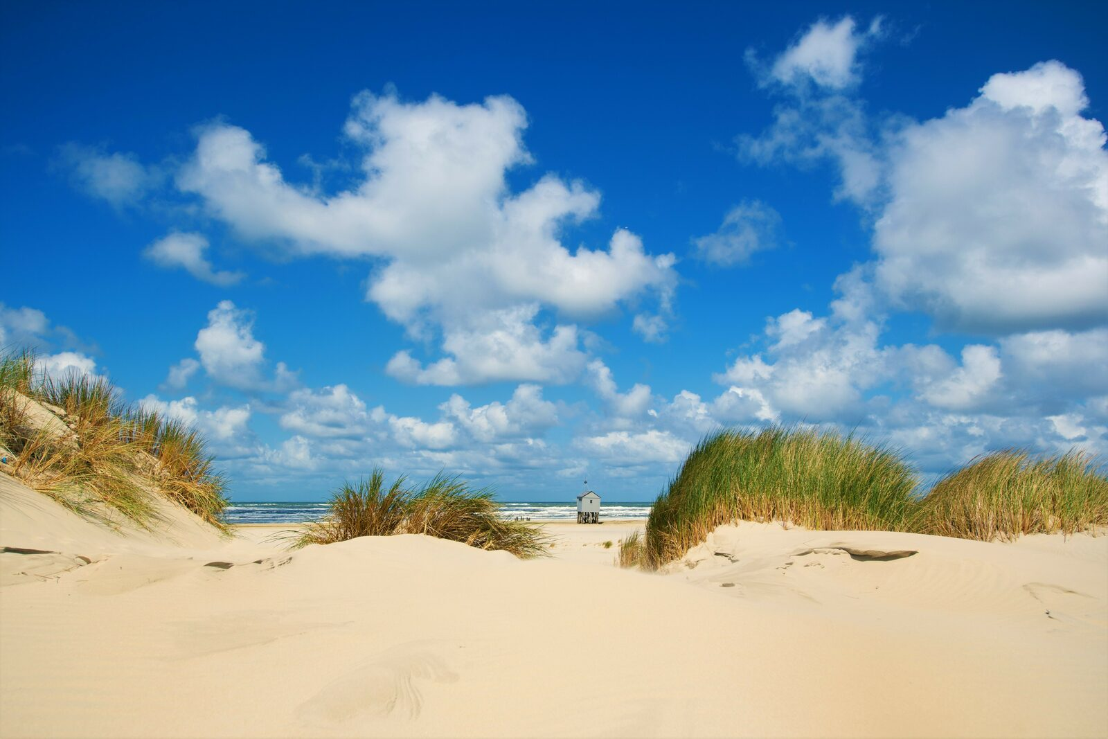 Do you want to experience the true island feeling? Come visit Terschelling!