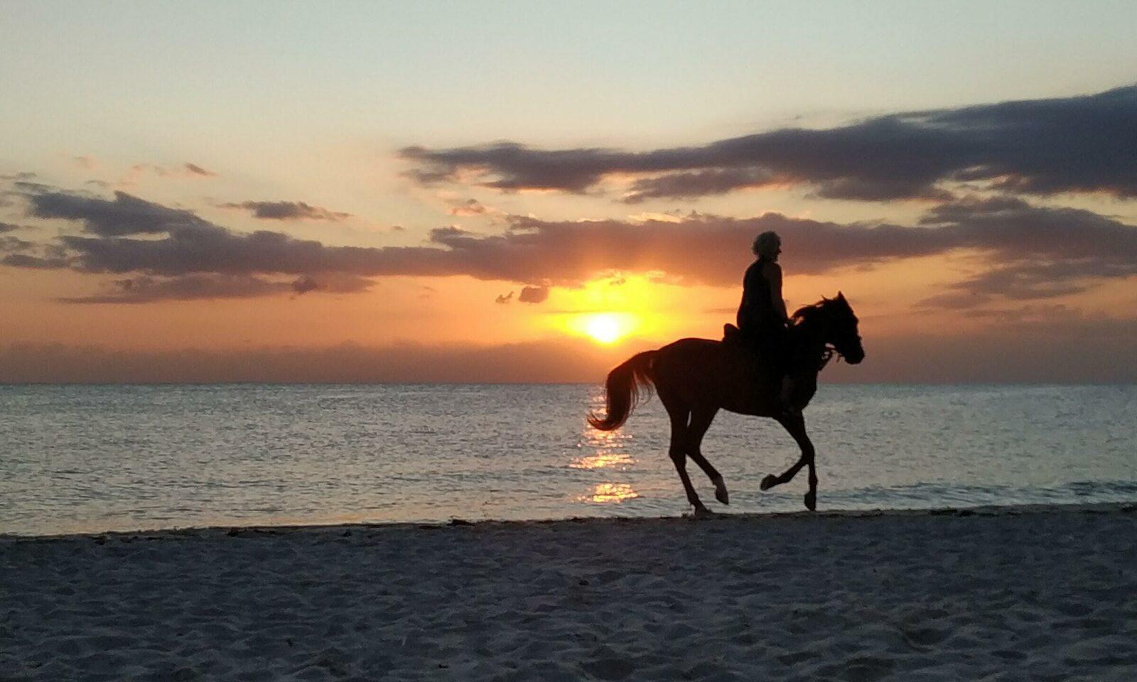 Paardrijden in Hardelot en omgeving