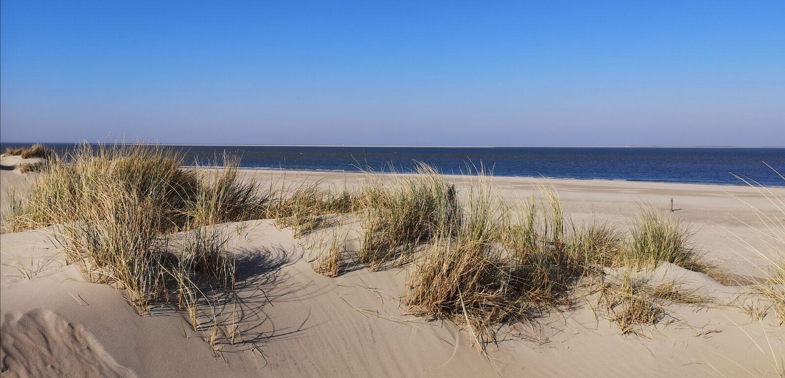 Meivakantie Texel