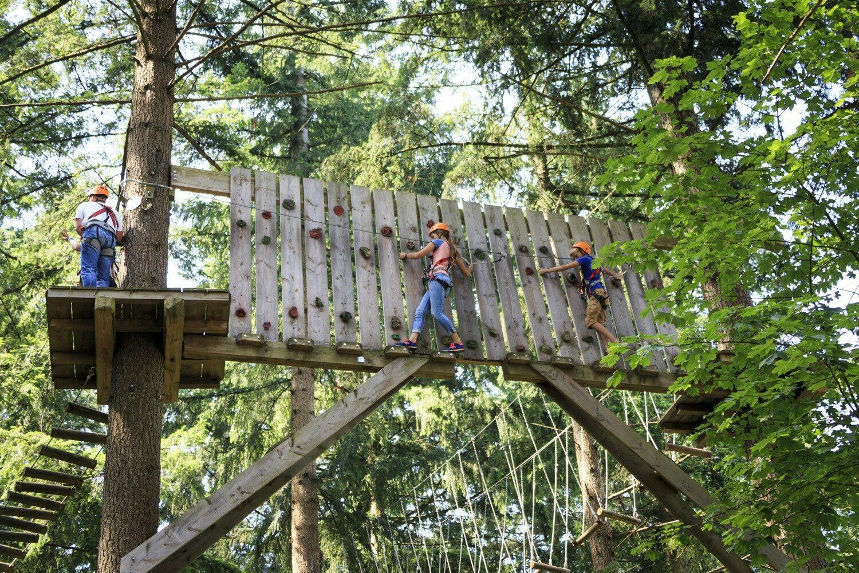 🧗🏼♂️ Climbing forest Garderen