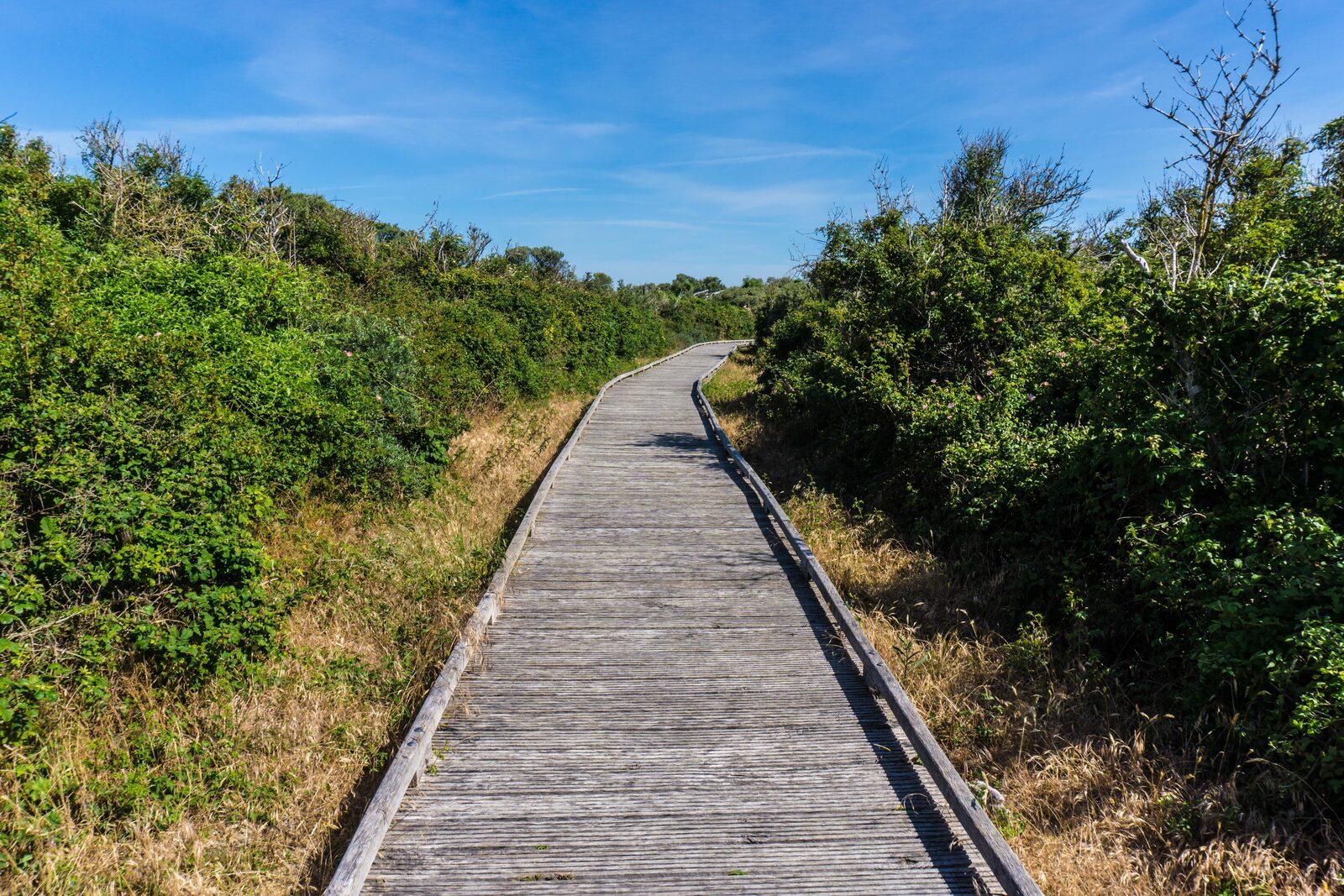 Réserve naturelle Platier d'Oye