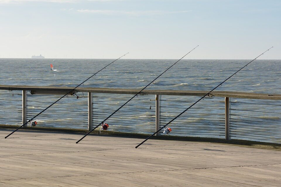 Fishing vacation the Netherlands