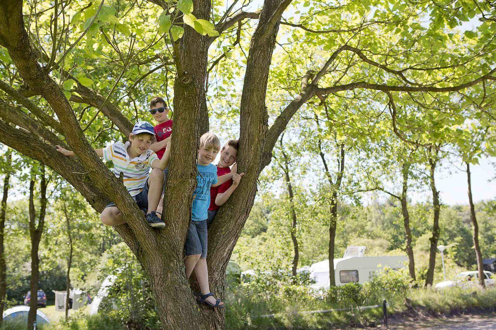 Kindvriendelijke camping in Overijssel