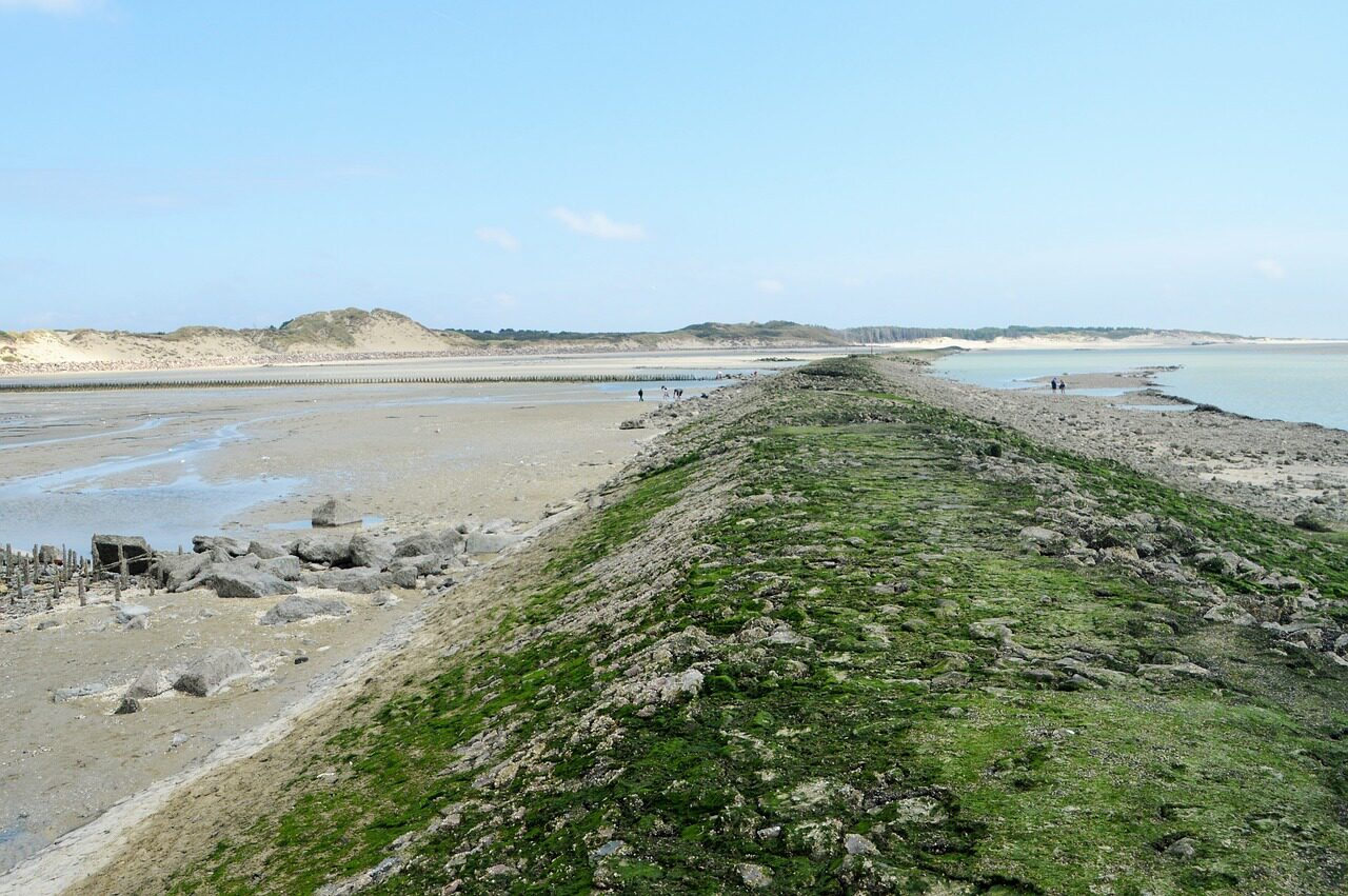 Visit the Authie Bay in Berck sur Mer