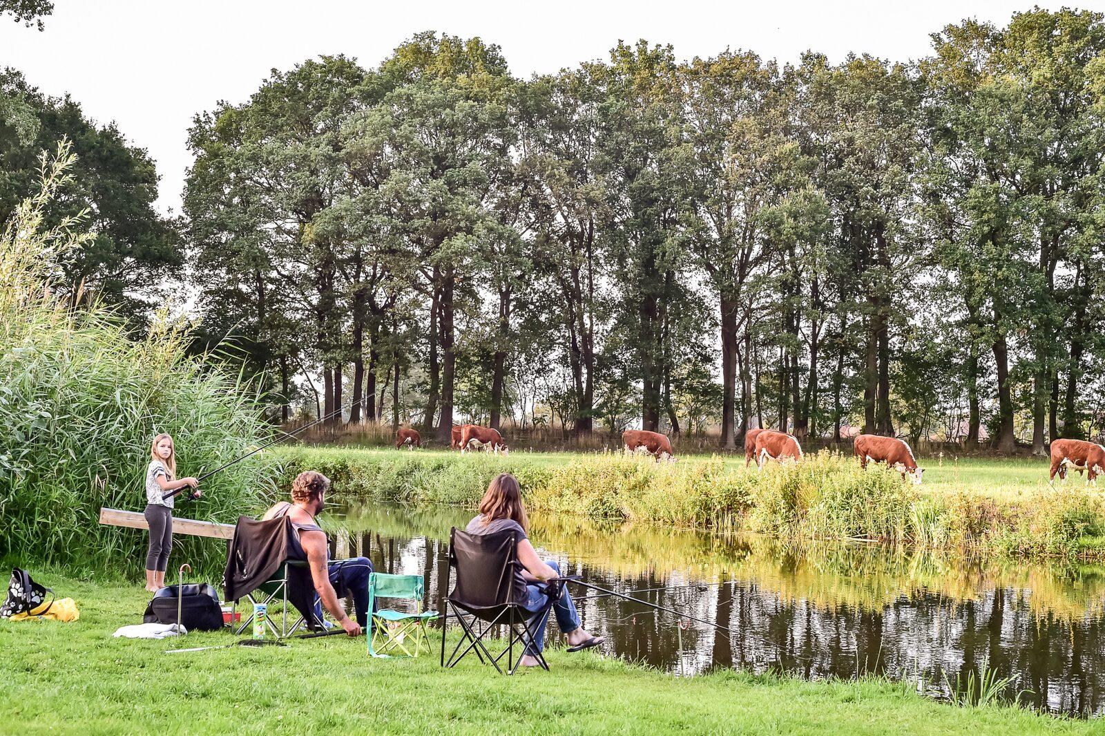 Campingplatz mit fischwasser