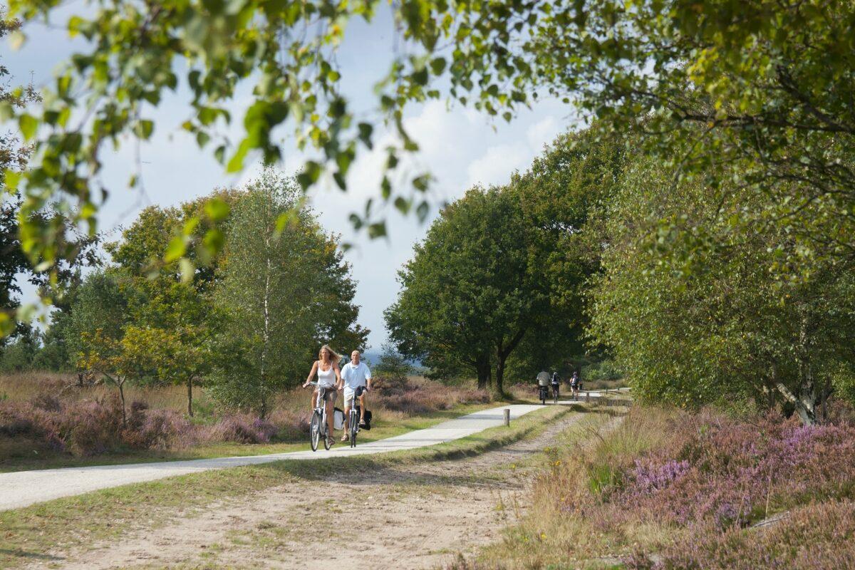 Vakantiepark in Holten
