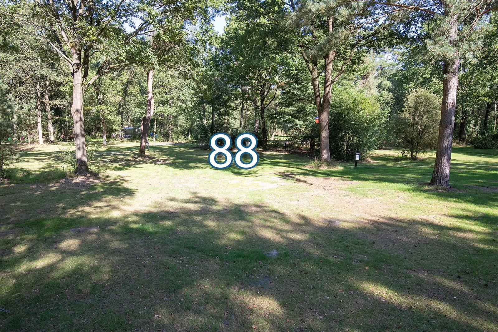 boshoek 88