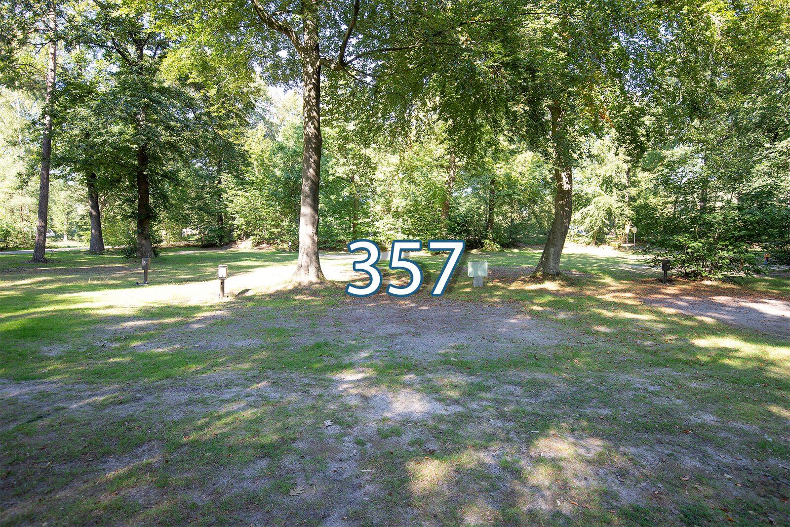 houtduif 357
