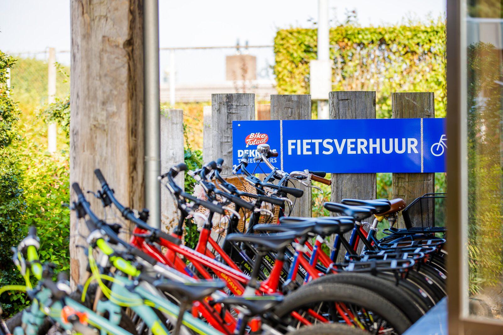 Fahrrad- und Motorrollerverleih