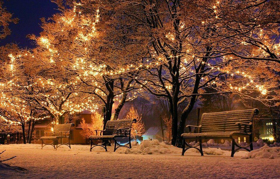 Weihnachtsshow im Gartenzentrum de Boet