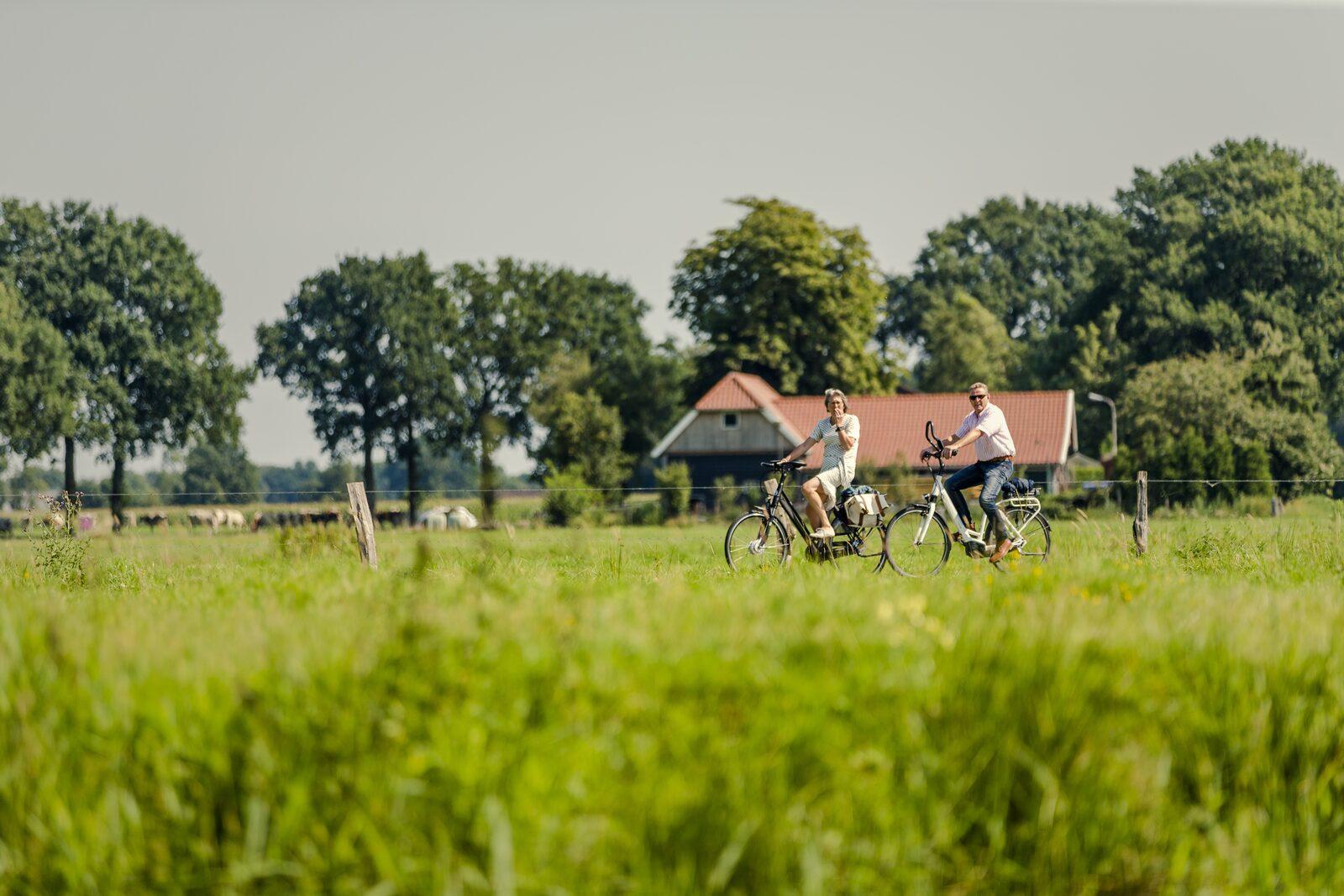 Zelten in der Provinz Overijssel