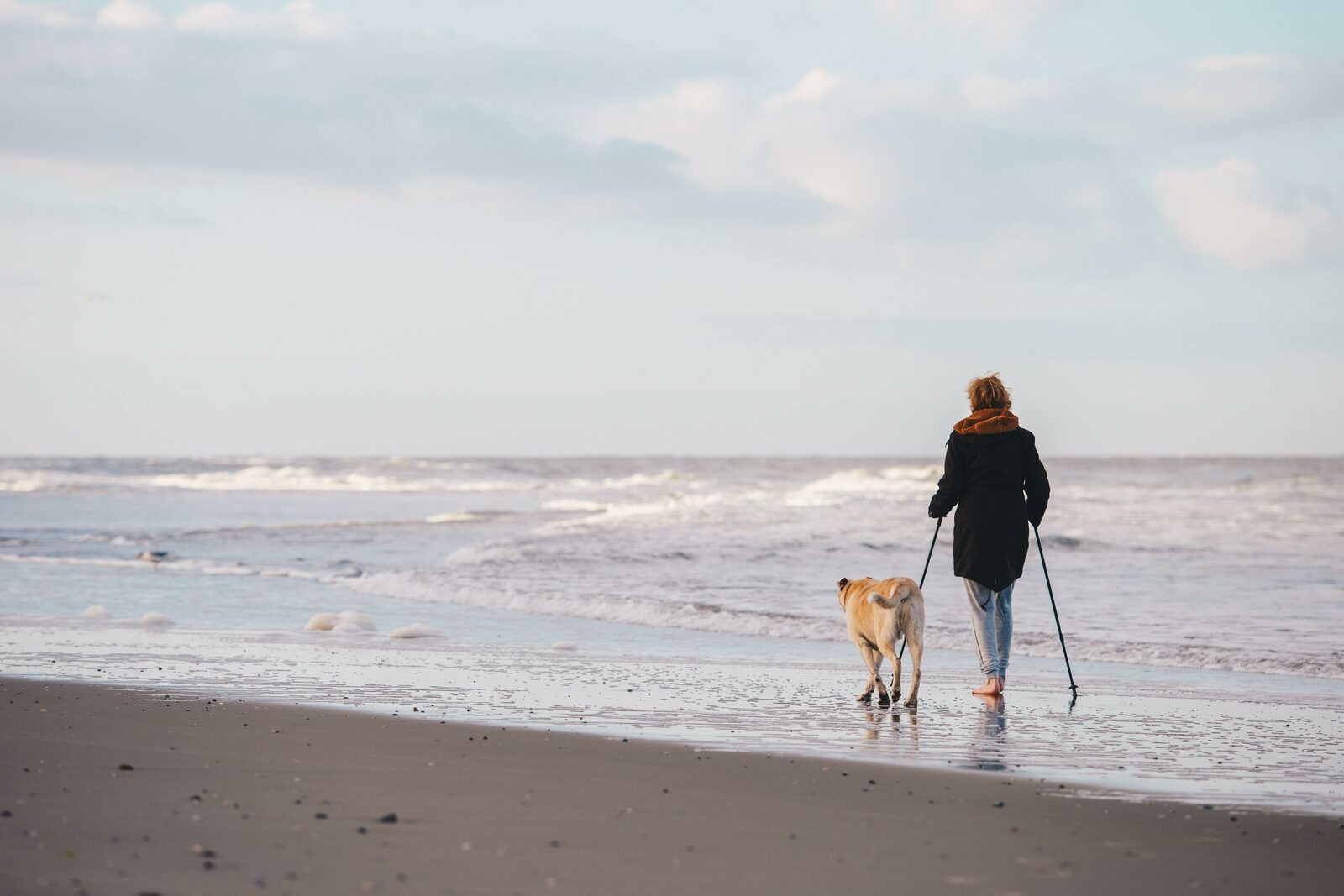 Dogs allowed in Evancy holiday rentals