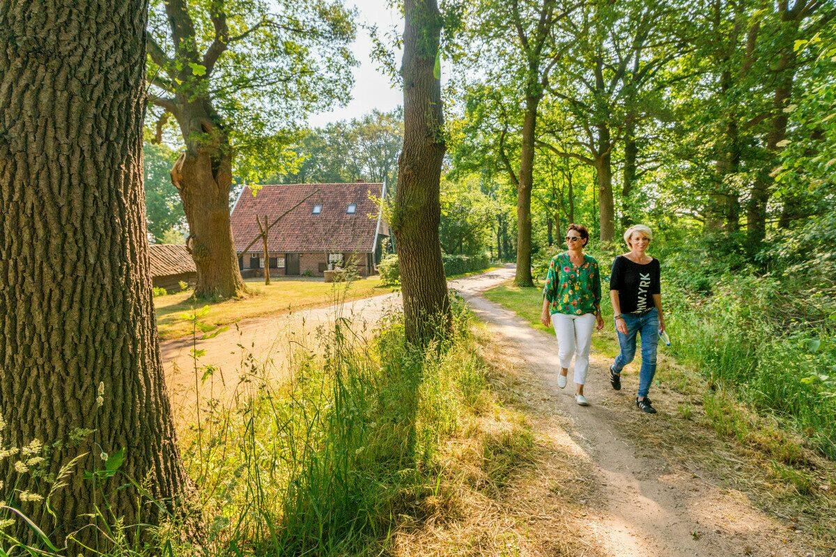 Duinkabouterpad Hollands duin